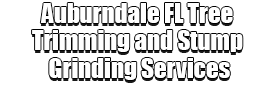 Auburndale FL Tree Trimming and Stump Grinding Services Logo-We Offer Tree Trimming Services, Tree Removal, Tree Pruning, Tree Cutting, Residential and Commercial Tree Trimming Services, Storm Damage, Emergency Tree Removal, Land Clearing, Tree Companies, Tree Care Service, Stump Grinding, and we're the Best Tree Trimming Company Near You Guaranteed!
