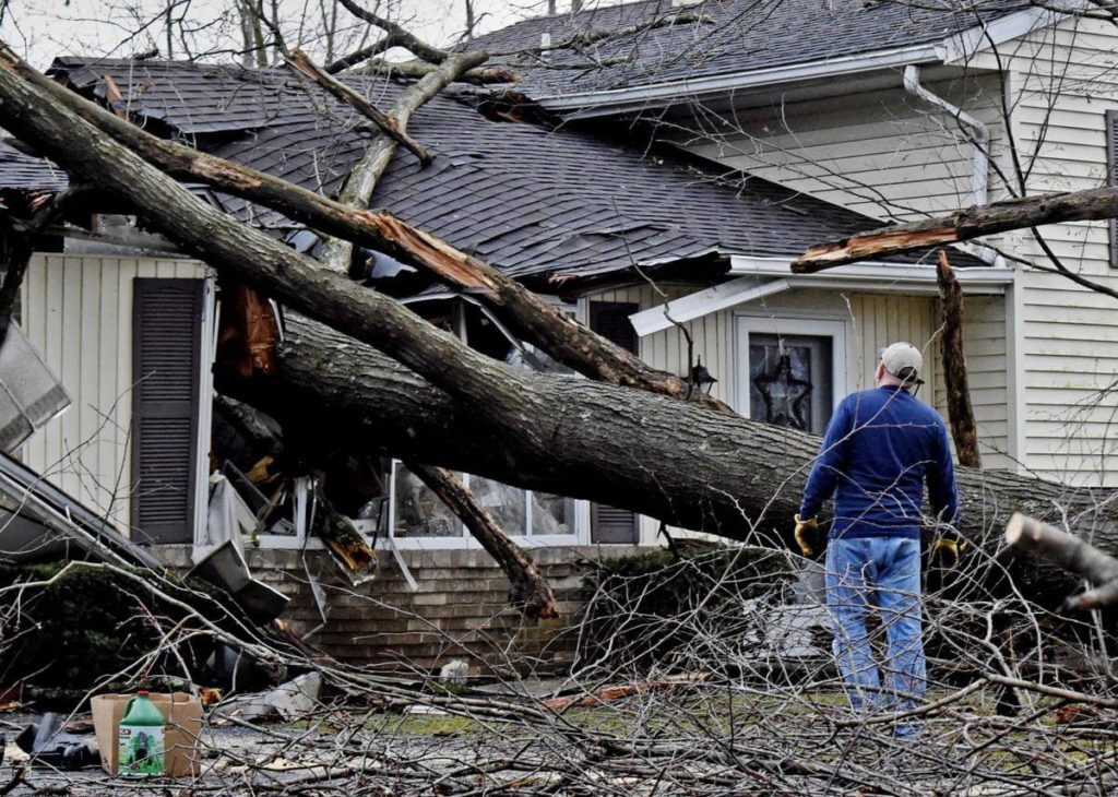 Storm Damage-Auburndale FL Tree Trimming and Stump Grinding Services-We Offer Tree Trimming Services, Tree Removal, Tree Pruning, Tree Cutting, Residential and Commercial Tree Trimming Services, Storm Damage, Emergency Tree Removal, Land Clearing, Tree Companies, Tree Care Service, Stump Grinding, and we're the Best Tree Trimming Company Near You Guaranteed!